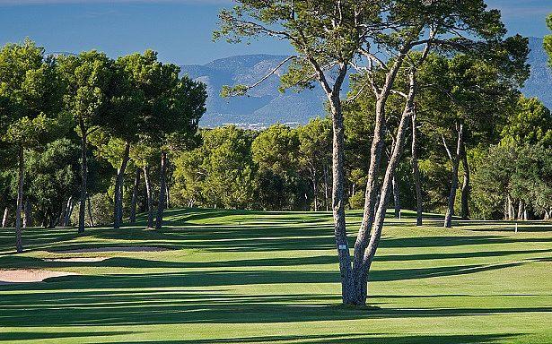 Golf Maioris auf Mallorca, Balearen, Spanien