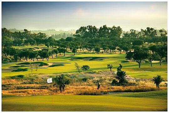 Elea Golf Course / Golfreisen Zypern