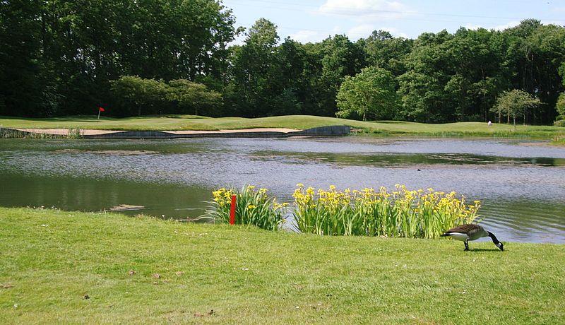 Bossenstein Golf & Polo Club in Belgien