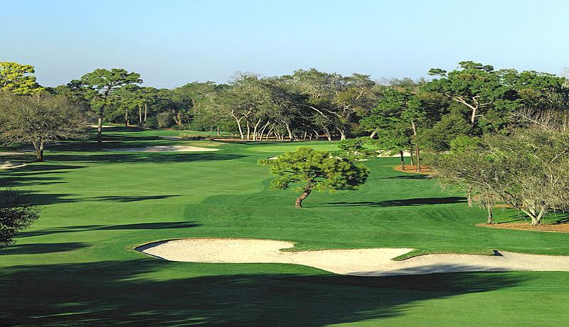 Innisbrook Golf bei Palm Harbor / Golfreisen Florida