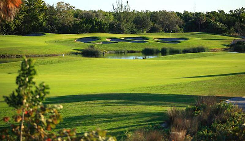 Hammock Bay Golf nähe Naples / Golfreisen Florida