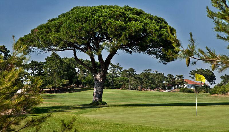 Estoril Palácio Golf Course / Golfreisen Portugal